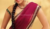 Pranitha hot photos in saree