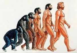 Tiến hóa của hệ thống sinh giới -Tài liệu ôn thi bác sĩ nội trú - Môn Y sinh học Di truyền