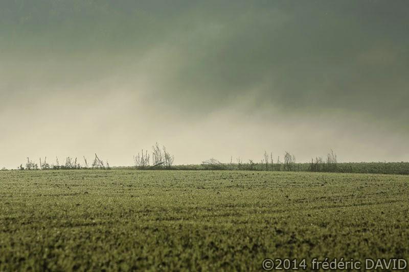 champ brume campagne Essonne