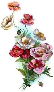 imagens para decoupage de flores
