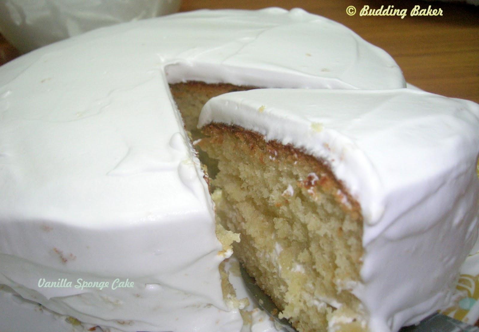 Budding baker basic vanilla sponge cake for Basic vanilla sponge