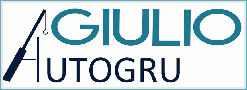 www.giulioautogru.it