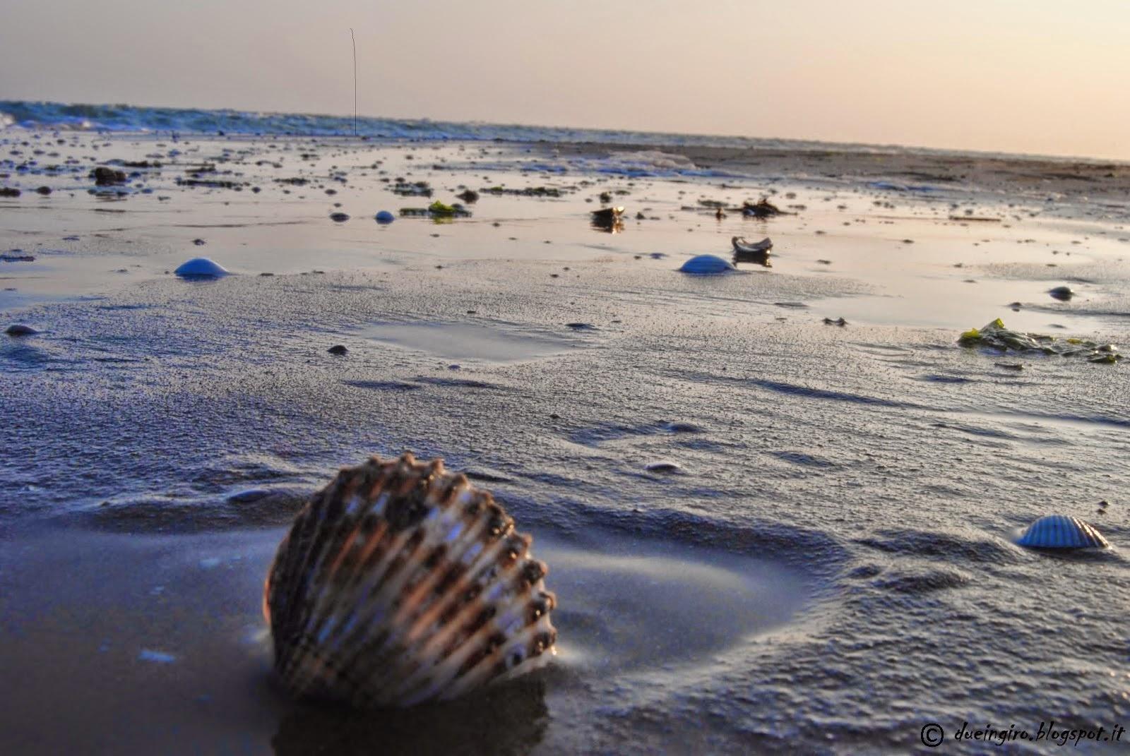 Brussa la nostra spiaggia preferita - Alla colorazione della spiaggia ...