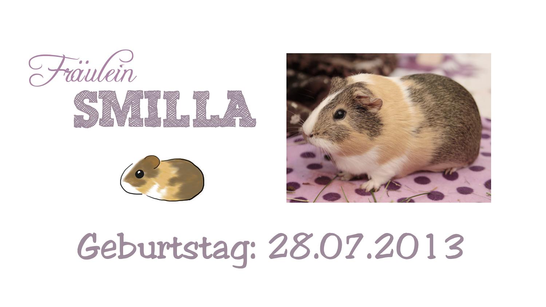 http://wutzdoc.blogspot.de/2014/04/fraulein-smilla.html