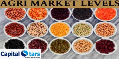 Chana Tips, Soyabean Tips, Dhaniya Tips, Turmeric Tips, agri commdity tips, free agri calls, AGRI NCDEX/MCX Tips