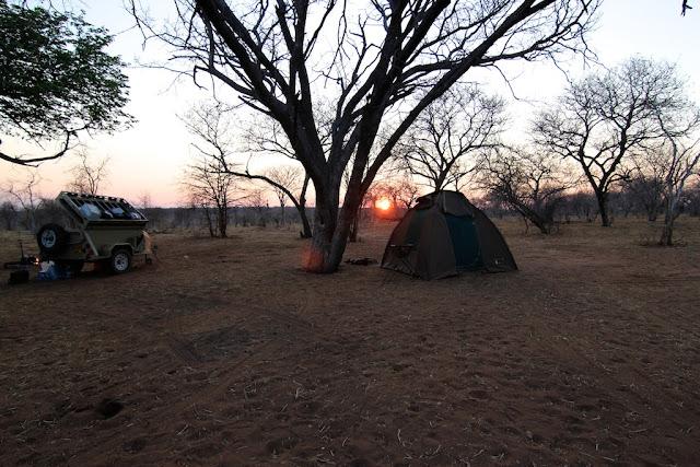 Chobe National Park, Botswana - Kim Jay Photography