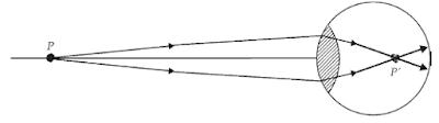 Proses Pembentukan Bayangan di Retina Mata Saat Mata Melihat Benda