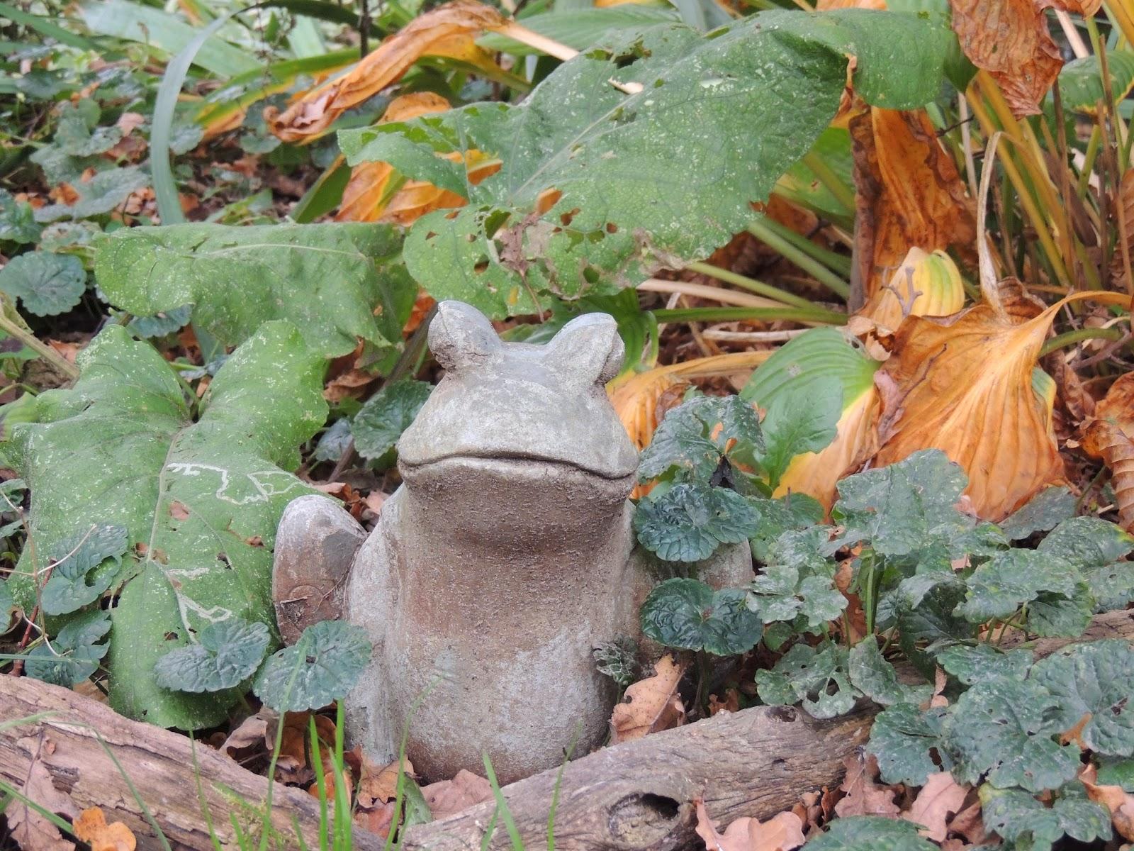 Il etait un petit jard 39 ain decor au jardin for Decoration jardin grenouille