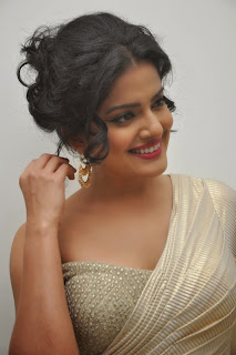 Vishakha Singh at rowdy fellow audio 042.jpg