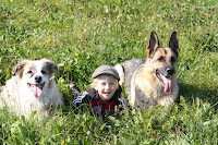 dogs keep kids active