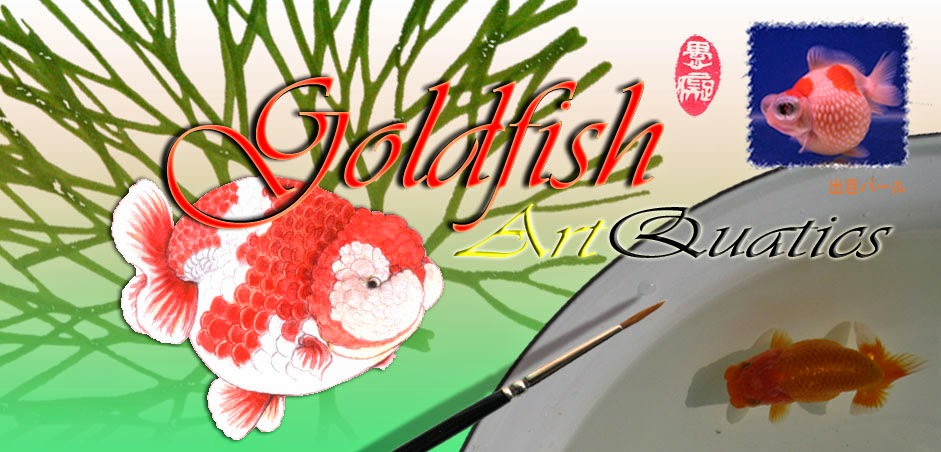 GoldfishArtQuatics