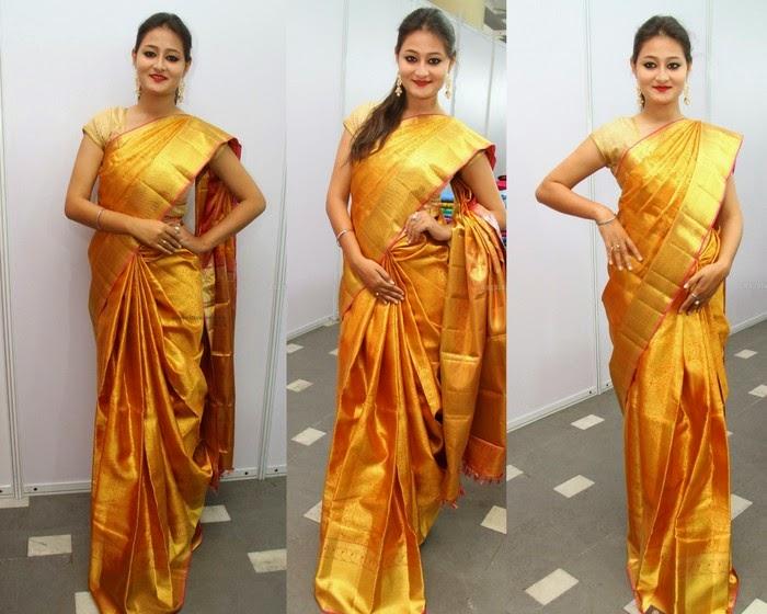 Niloufer Gold Silk Saree