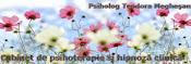 Cabinet individual de psihologie- Meghesan Teodora