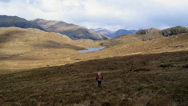 scotland's wilderness