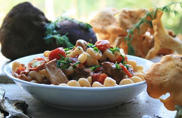Pasta con funghi gallinacci