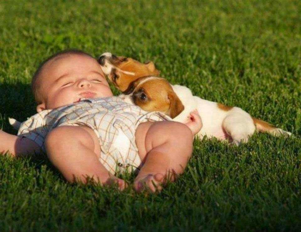 Child Sleeping with Pets Love