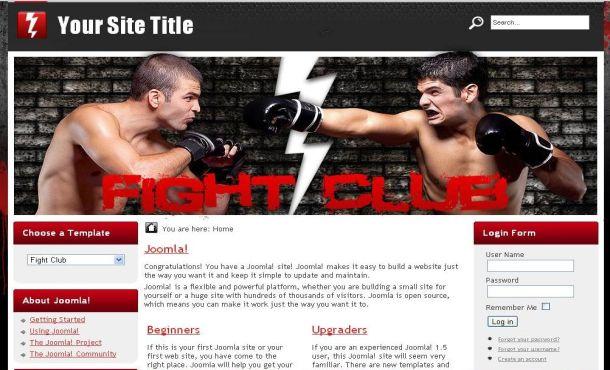 'Fight