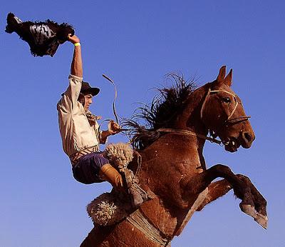 fotografi cu pastele cailor