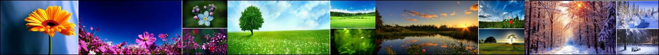 Natūrali produkcija imunitetui ir kitoms organizmo sistemoms