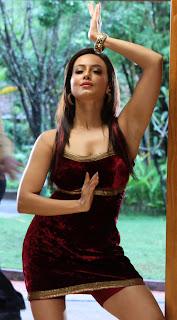 sana khan  stills in gajjala gurram movie(5).JPG