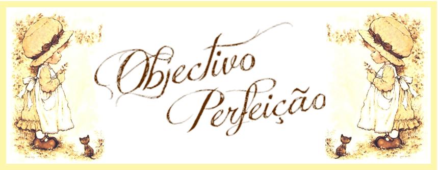 Objectivo Perfeição
