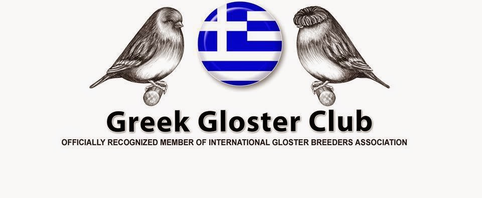Greek Gloster Club