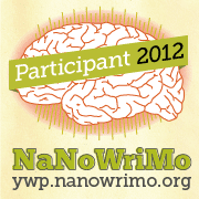 NANOWRIMO PARTICIPANT