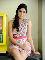 Manisha Yadav Photos at Preminchali Success meet-cover-photo