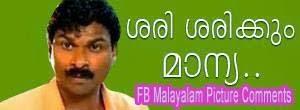 Sari sarikkum maanya - Ayyappa Baiju Comedy dialogue