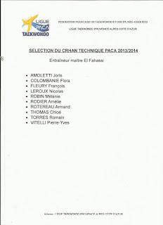 Nicolas Leroux ceinture noire 3 ème dan sélectionné au Crhan  tecknique PACA 2013 / 2014