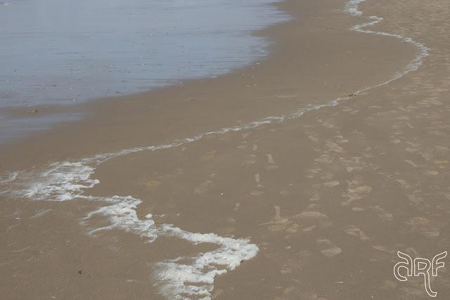foam lines in sand