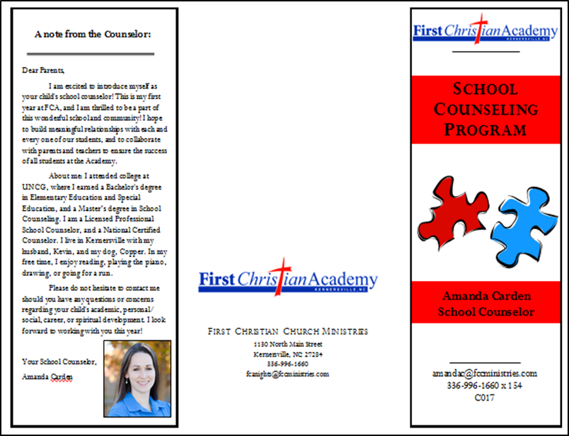 """domains of school counselor """"finally, a text that thoroughly covers the topic of classroom guidance – an effective tool for every school counselor at every school level."""