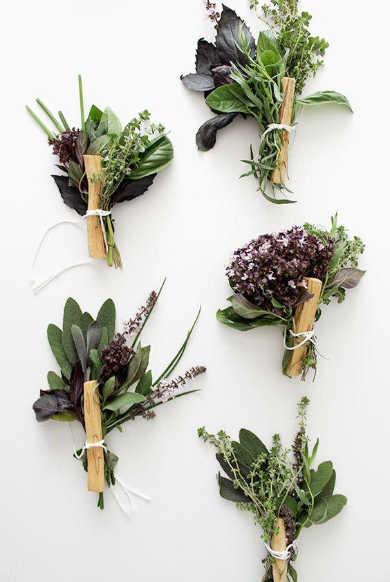 *herbs*