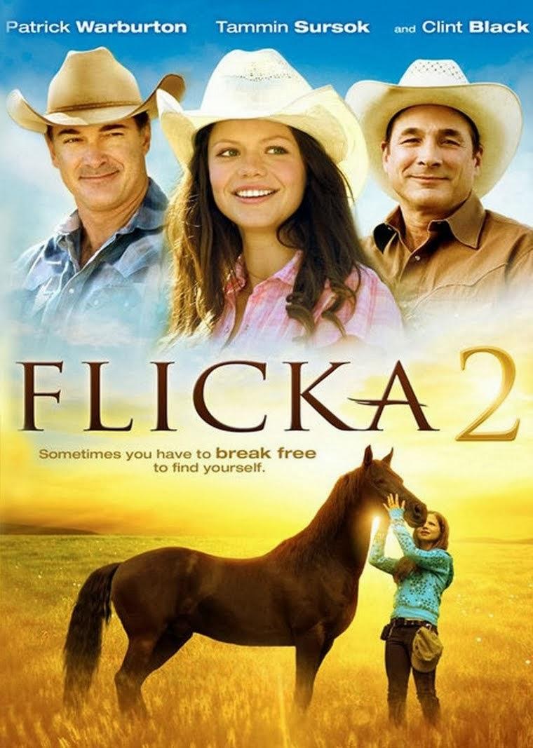 Flicka 2 – Dublado