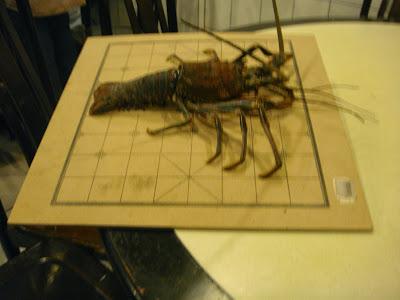 октябрь, 2009, october, Taipei, Taiwan, Тайвань, Тайпей, Yehliu, лобстер, шамбас, lobster, gambas