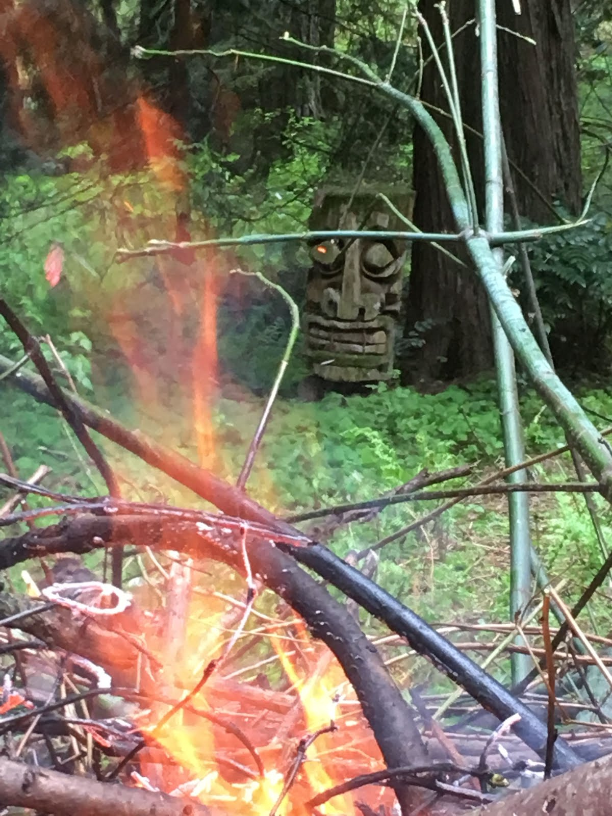 Burning debris this weekend under the watchful eye of Fire Marshall Bill.