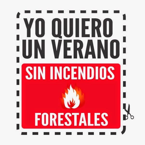 No a los incendios forestales.