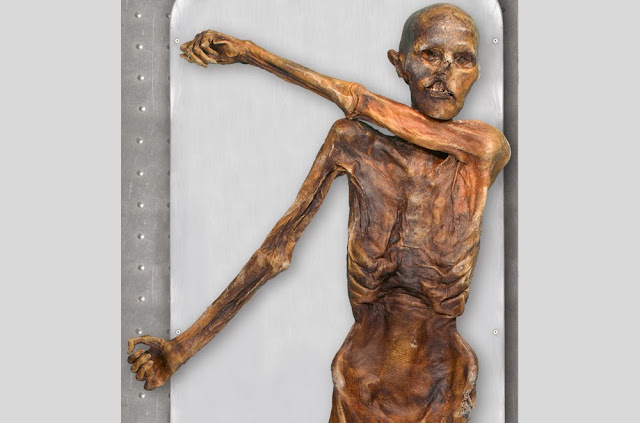 5,300-Year-Old Otzi The Iceman Has 19 Living Relatives In Austria