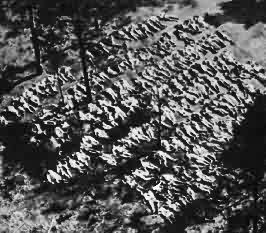 Exhumed bodies of Polish Officers massacred at Katyn 1940
