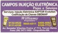 CAMPOS INJEÇÃO ELETRONICA