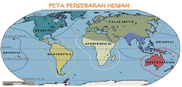 peta persebaran fauna di dunia