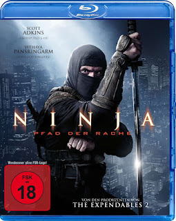 Ninja Shadow of a Tear (2013) Hindi Dual Audio BluRay | 720p | 480p