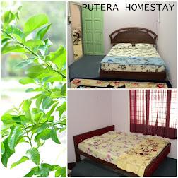 PUTERA HOMESTAY