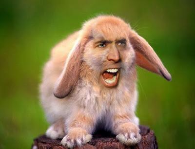 Lo curioso de Nicolas Cage