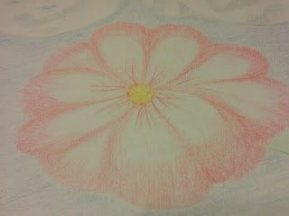 colored pencil art, flower