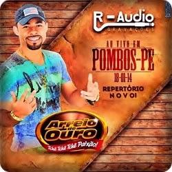 Pombos - PE 18.01.2014