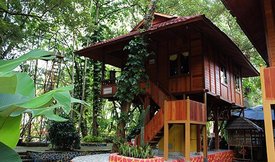 Penginapan Di Taman Matahari Bogor
