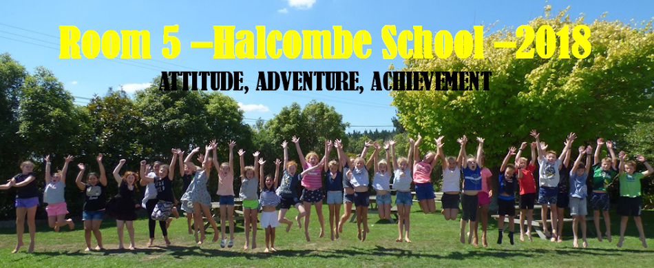 Room 5 Halcombe School 2018