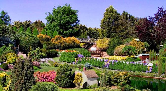 English time in pe aflor for Jardin botanico montjuic