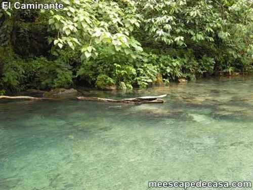 Aguas verde claras del río Tioyacu (Rioja, Altomayo, Perú)